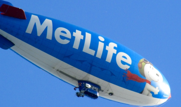 MetLife blimp checking out the gardens in September. Just kidding.