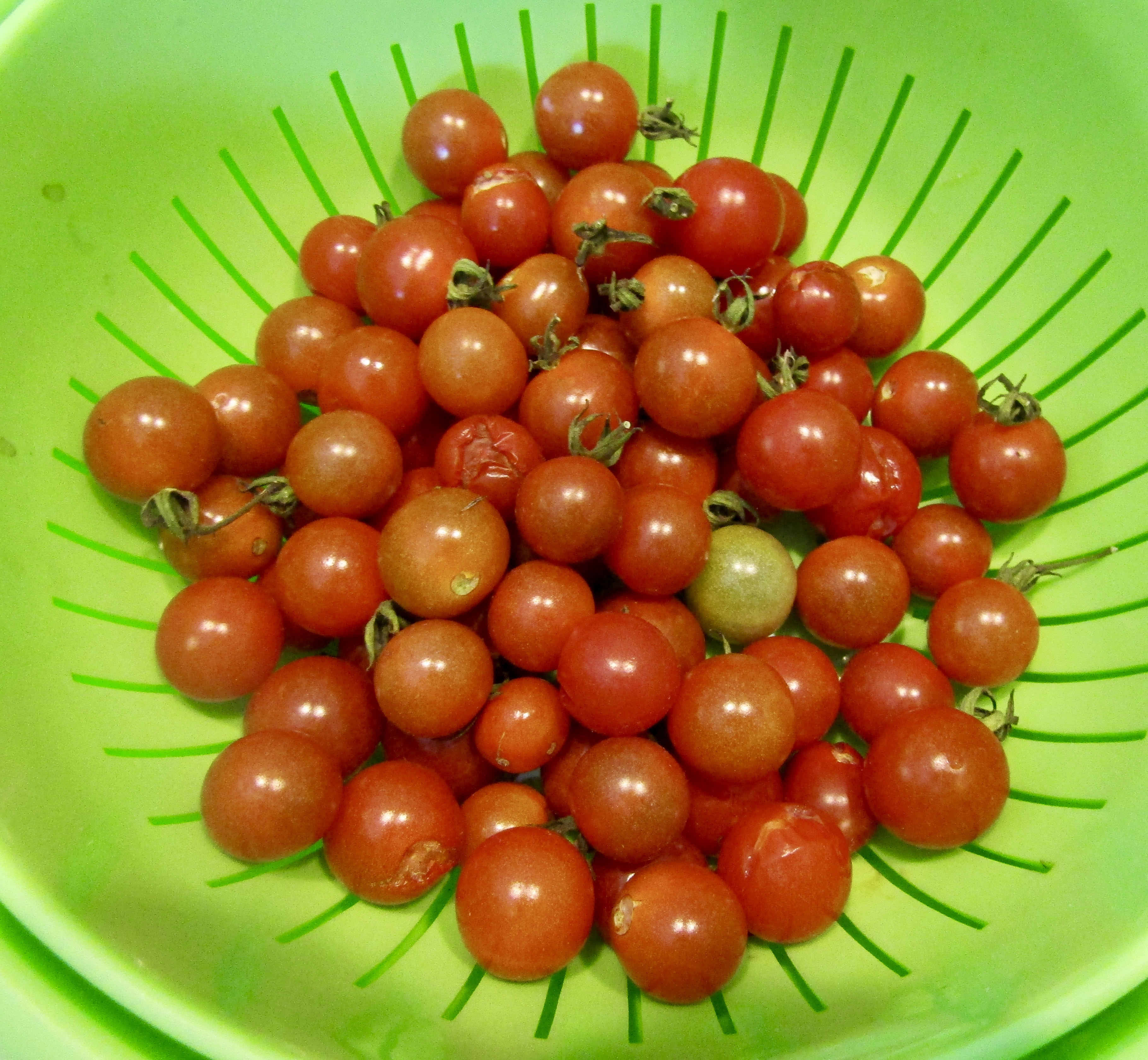 I wonder why dreams of tomatoes 40